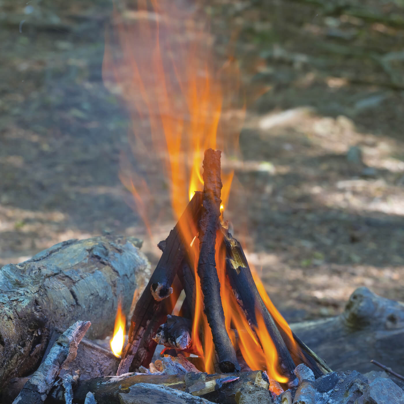 The tipi fire lay is easy to make, lights quickly and burns fast. It is often the fire used as the starting point for a larger fire built off of it by adding more wood either higher or on its sides.
