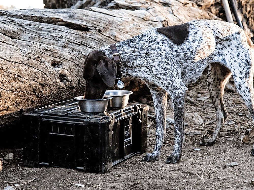 Front Runner Outfitters Wolf Pack dog