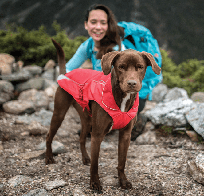 fleece-lined coat for dogs in camping essentials for dogs // tread magazine
