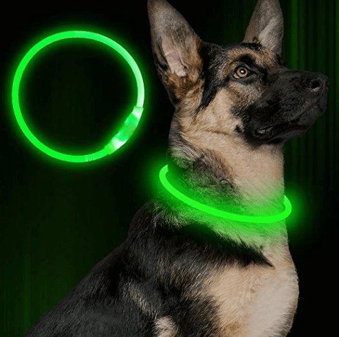 light-up outdoor led dog collar in camping essentials for dogs // tread magazine