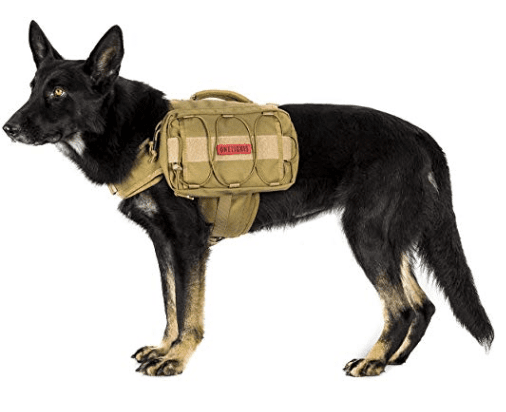 dog camping and hiking backpack in camping essentials for dogs // tread magazine