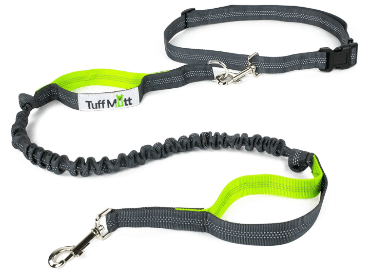 hands-free dog leash with waist belt in camping essentials for dogs // tread magazine
