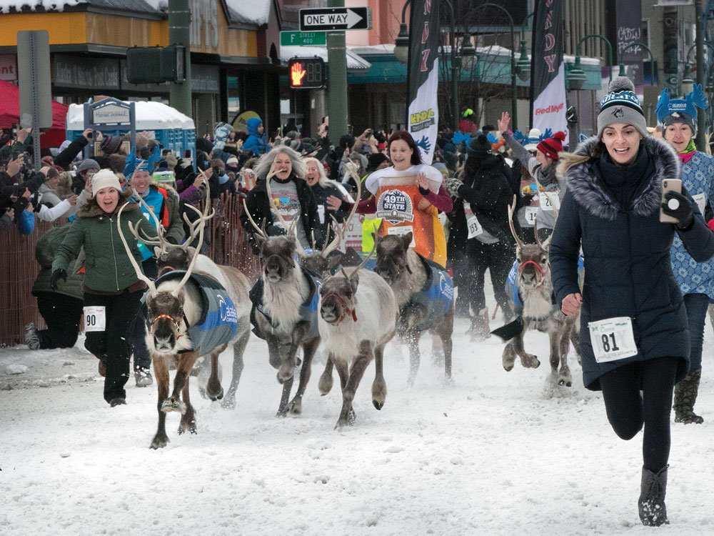 Running of the Reindeer to start the Iditarod race