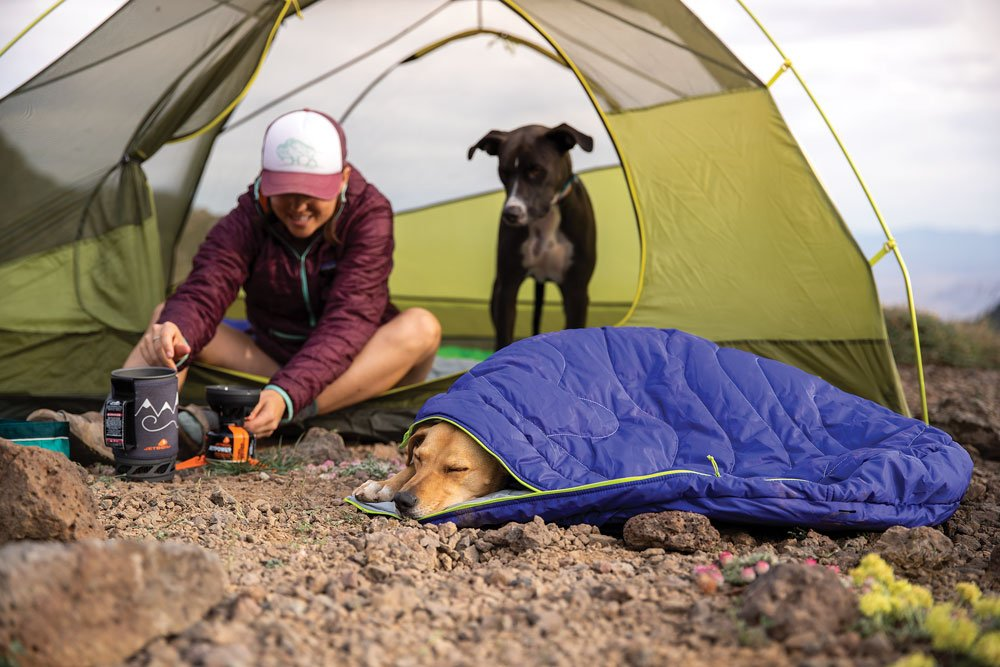 Make sure your pup has a place to sleep at the campground