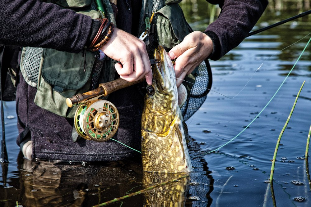 Patience pays off for this fly-fisherman