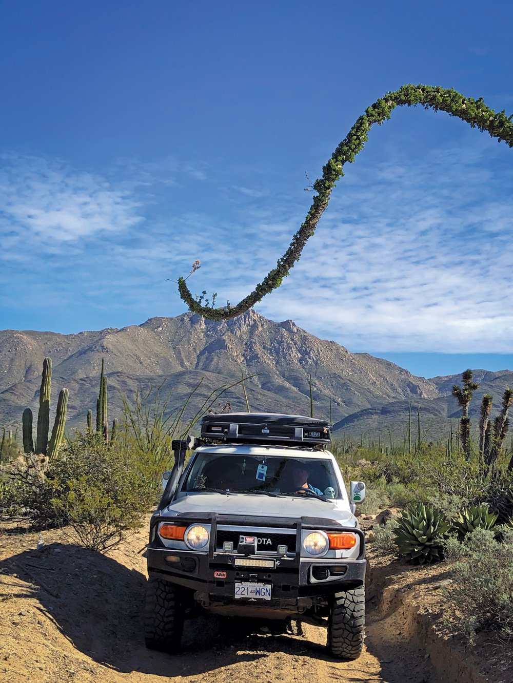 FJ Cruiser on one of many adventures outdoors