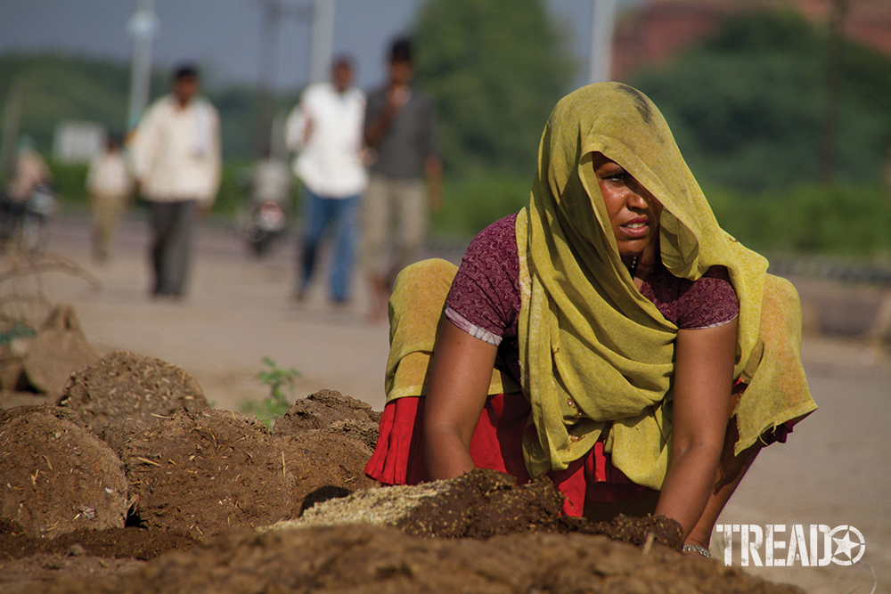 A rural Indian woman, wrapped in colorful clothing forms dung cakes from elephant droppings.