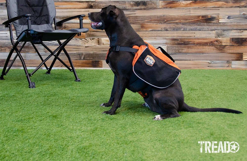 This black and orange day pack has pockets that are lined with breathable mesh-and-foam padding. Made to last with a ripstop shell, one side of the pack features attachment loops, and the other side sports hook-and-loop attachments.